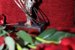 Награждение МГ 08.12 2014 (249)